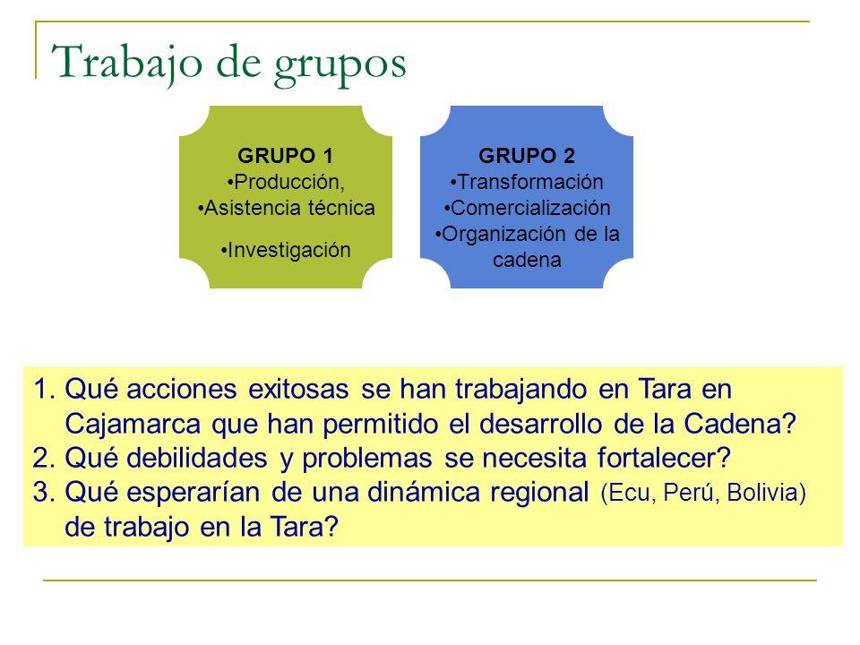 Trabajo de grupos GRUPO 2 Transformación Comercialización Organización de la cadena GRUPO 1 Producción, Asistencia técnica Investigación 1.Qué accione