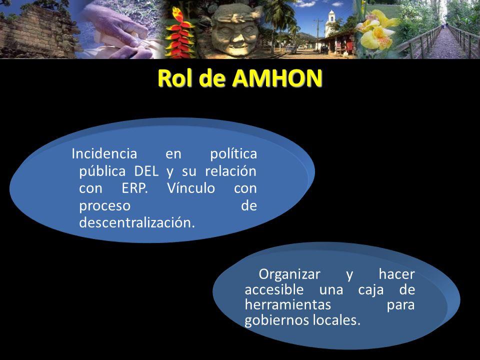 Rol de AMHON Organizar y hacer accesible una caja de herramientas para gobiernos locales. Incidencia en política pública DEL y su relación con ERP. Ví