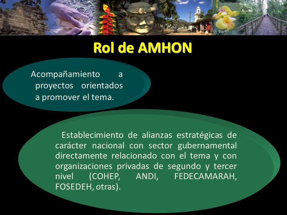 Rol de AMHON Establecimiento de alianzas estratégicas de carácter nacional con sector gubernamental directamente relacionado con el tema y con organiz