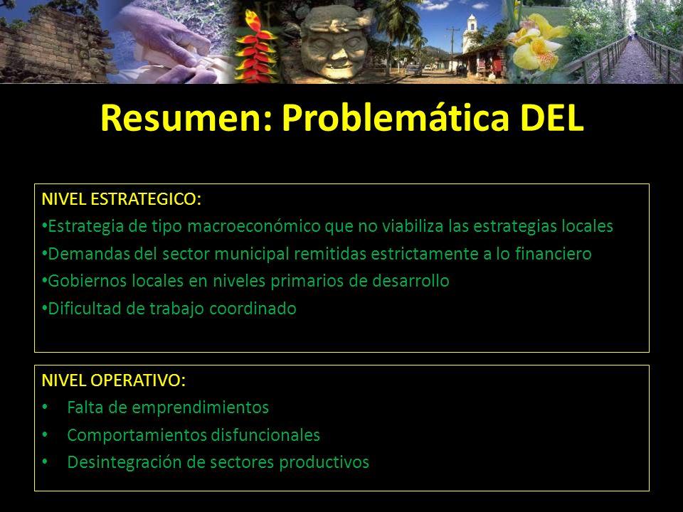 Resumen: Problemática DEL NIVEL ESTRATEGICO: Estrategia de tipo macroeconómico que no viabiliza las estrategias locales Demandas del sector municipal