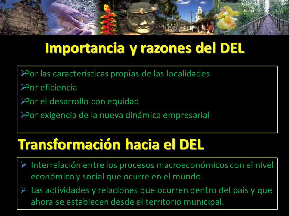 Importancia y razones del DEL Por las características propias de las localidades Por eficiencia Por el desarrollo con equidad Por exigencia de la nuev
