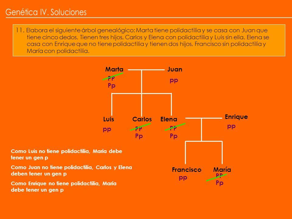 11. Elabora el siguiente árbol genealógico: Marta tiene polidactilia y se casa con Juan que tiene cinco dedos. Tienen tres hijos, Carlos y Elena con p