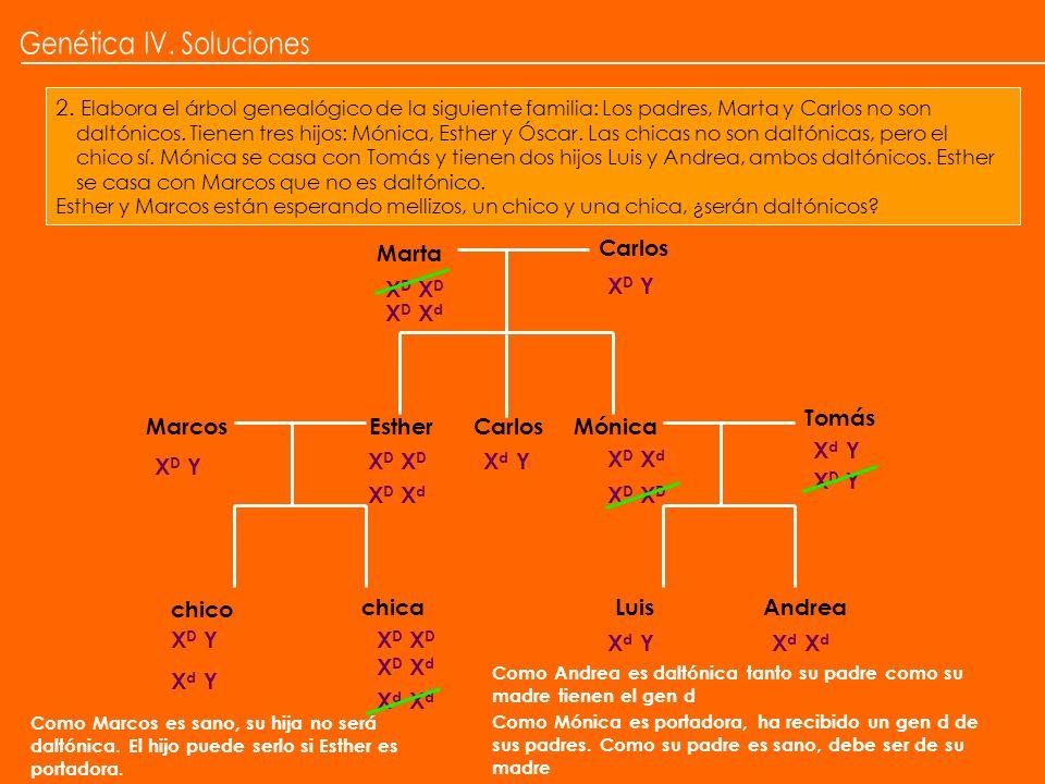 2. Elabora el árbol genealógico de la siguiente familia: Los padres, Marta y Carlos no son daltónicos. Tienen tres hijos: Mónica, Esther y Óscar. Las