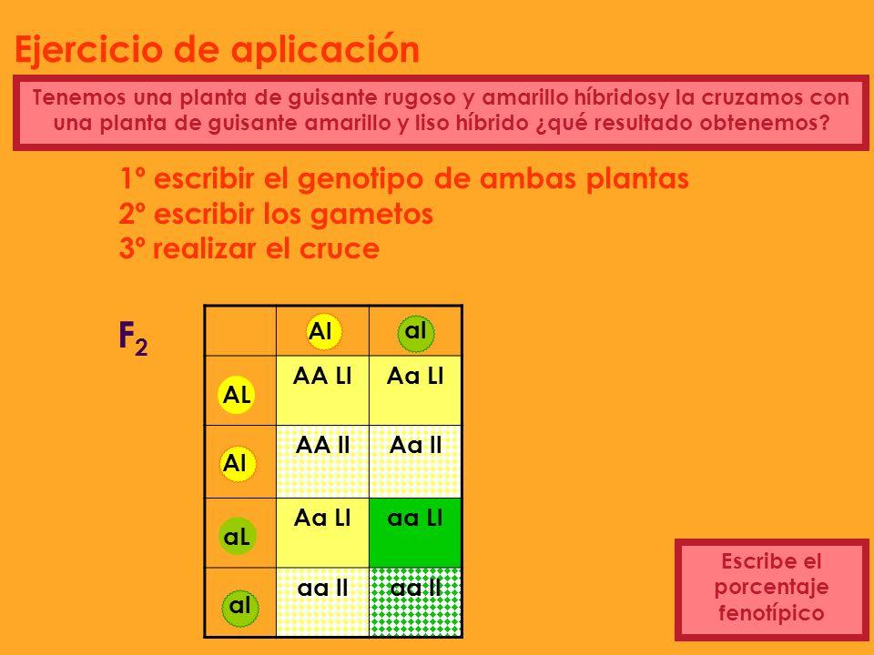 1º escribir el genotipo de ambas plantas 2º escribir los gametos 3º realizar el cruce Rugoso amarillo híbrido gametos AL al aL Al Tenemos una planta d