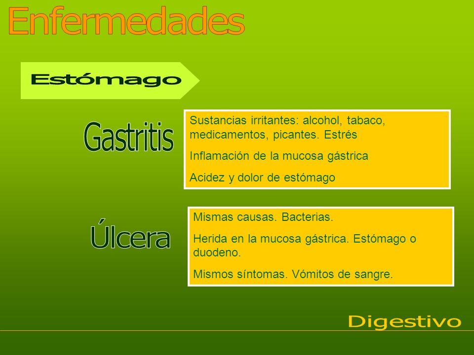Sustancias irritantes: alcohol, tabaco, medicamentos, picantes. Estrés Inflamación de la mucosa gástrica Acidez y dolor de estómago Mismas causas. Bac