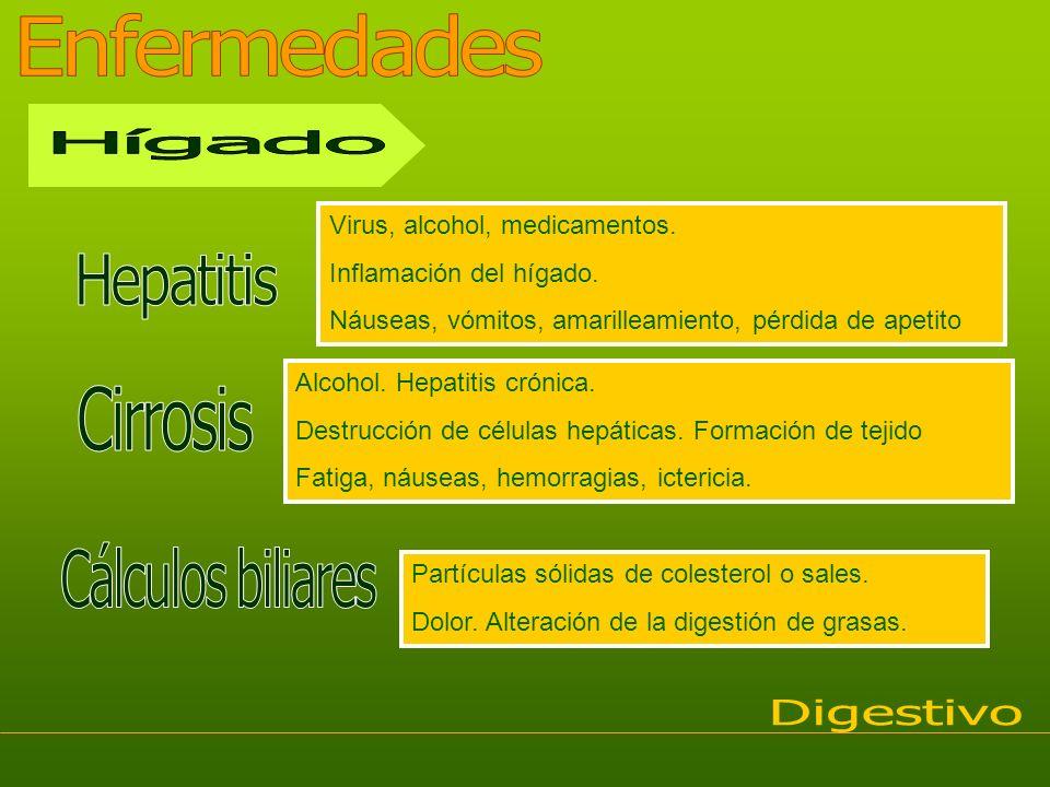 Virus, alcohol, medicamentos. Inflamación del hígado. Náuseas, vómitos, amarilleamiento, pérdida de apetito Alcohol. Hepatitis crónica. Destrucción de
