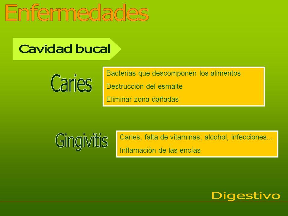 Bacterias que descomponen los alimentos Destrucción del esmalte Eliminar zona dañadas Caries, falta de vitaminas, alcohol, infecciones... Inflamación