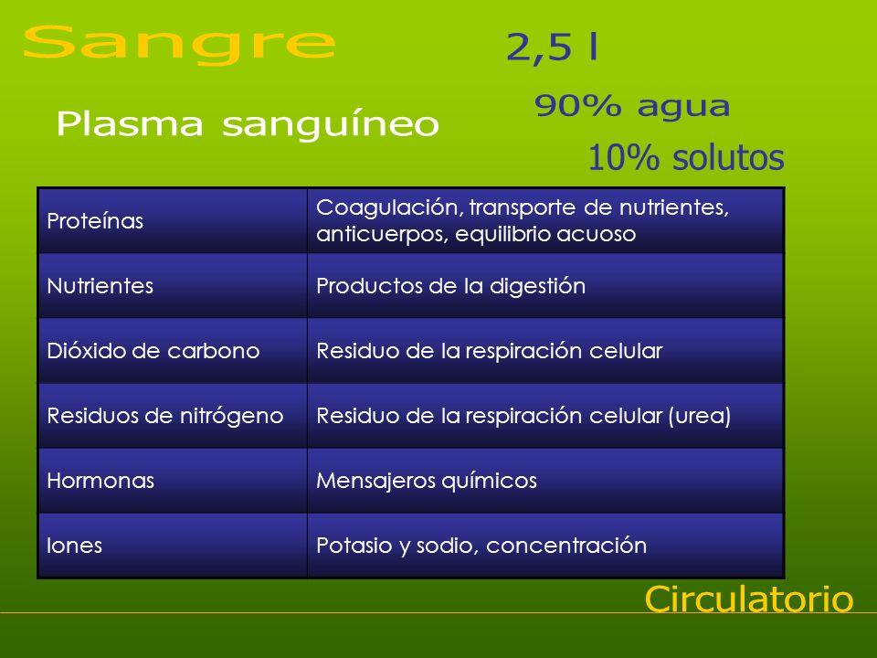 Proteínas Coagulación, transporte de nutrientes, anticuerpos, equilibrio acuoso NutrientesProductos de la digestión Dióxido de carbonoResiduo de la re