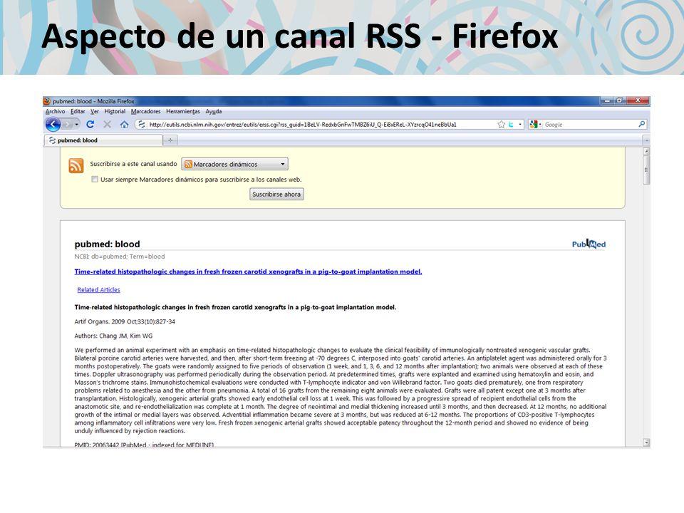 Aspecto de un canal RSS - Firefox