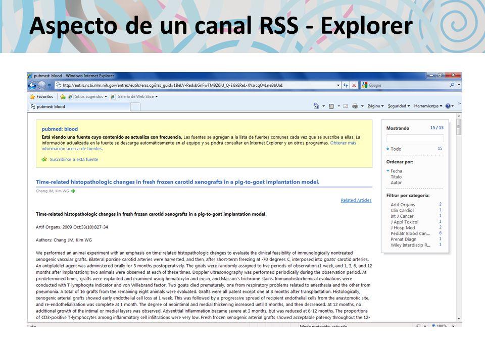 Aspecto de un canal RSS - Explorer