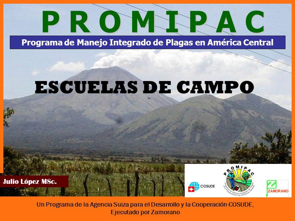 Un Programa de la Agencia Suiza para el Desarrollo y la Cooperación-COSUDE, Ejecutado por Zamorano Julio López MSc.