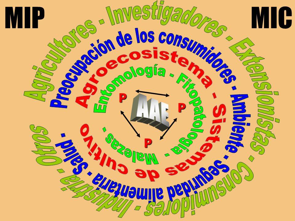 Elaboración de informe Presentación de resultados SISTEMATIZACIÓN