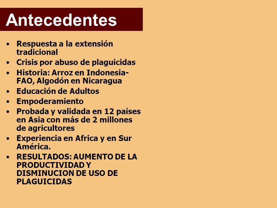 Respuesta a la extensión tradicional Crisis por abuso de plaguicidas Historia: Arroz en Indonesia- FAO, Algodón en Nicaragua Educación de Adultos Empoderamiento Probada y validada en 12 países en Asia con más de 2 millones de agricultores Experiencia en Africa y en Sur América.