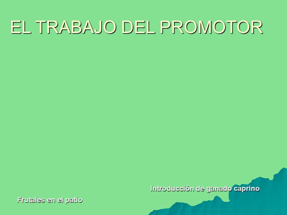 Introducción de ganado caprino Frutales en el patio EL TRABAJO DEL PROMOTOR