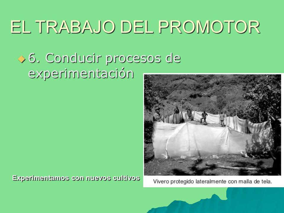 6. Conducir procesos de experimentación 6.