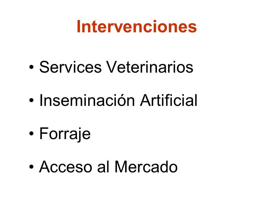 23 March 2009SDC M4P Workshop/Case of ACF Armenia 3 Intervenciones Services Veterinarios Inseminación Artificial Forraje Acceso al Mercado