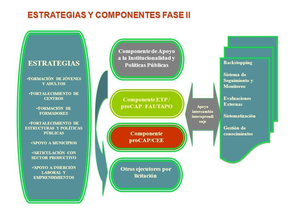 ESTRATEGIAS Y COMPONENTES FASE II ESTRATEGIAS FORMACIÓN DE JÓVENES Y ADULTOS FORTALECIMIENTO DE CENTROS FORMACIÓN DE FORMADORES FORTALECIMIENTO DE EST