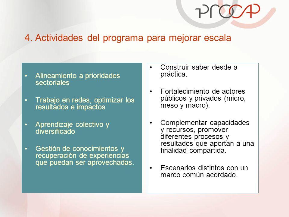 4. Actividades del programa para mejorar escala Alineamiento a prioridades sectoriales Trabajo en redes, optimizar los resultados e impactos Aprendiza
