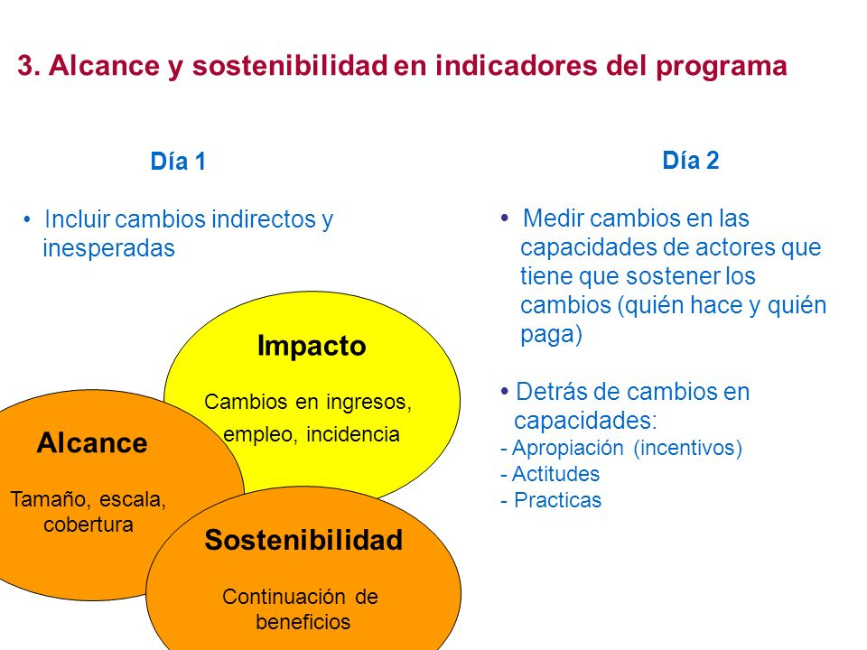 Impacto Cambios en ingresos, empleo, incidencia 3. Alcance y sostenibilidad en indicadores del programa Alcance Tamaño, escala, cobertura Sostenibilid