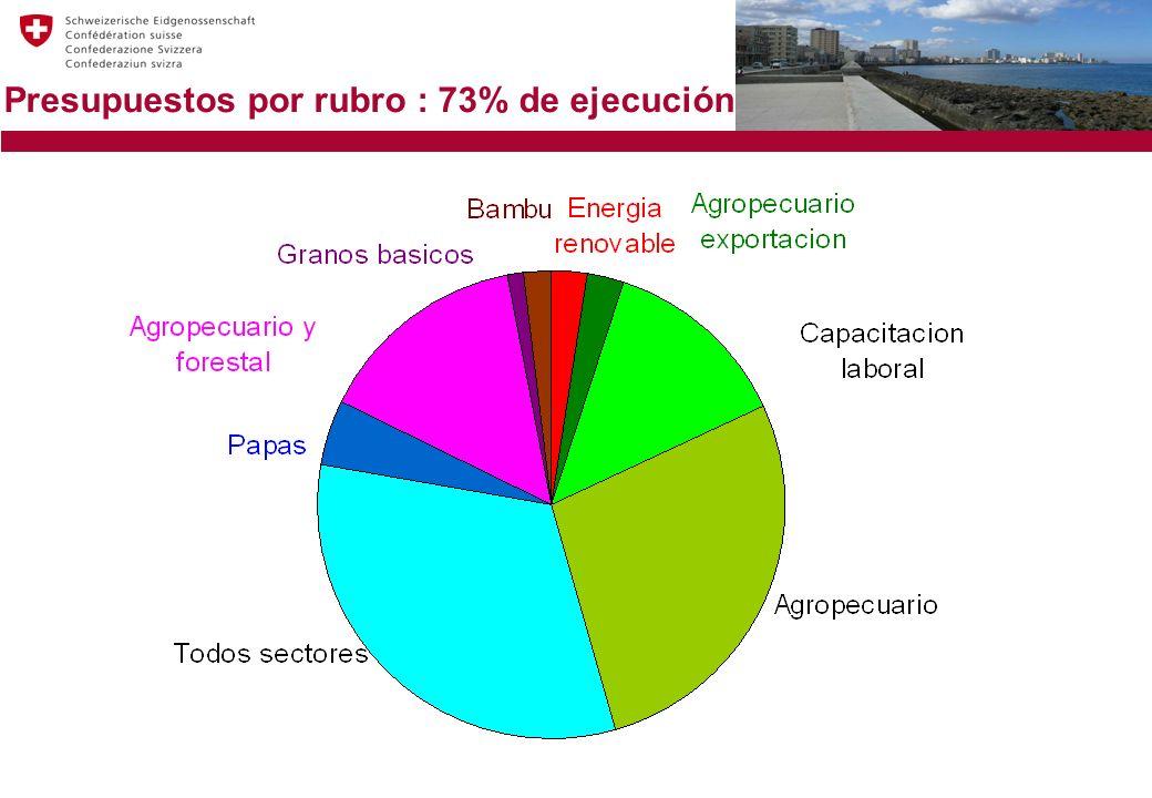 Presupuestos por rubro : 73% de ejecución