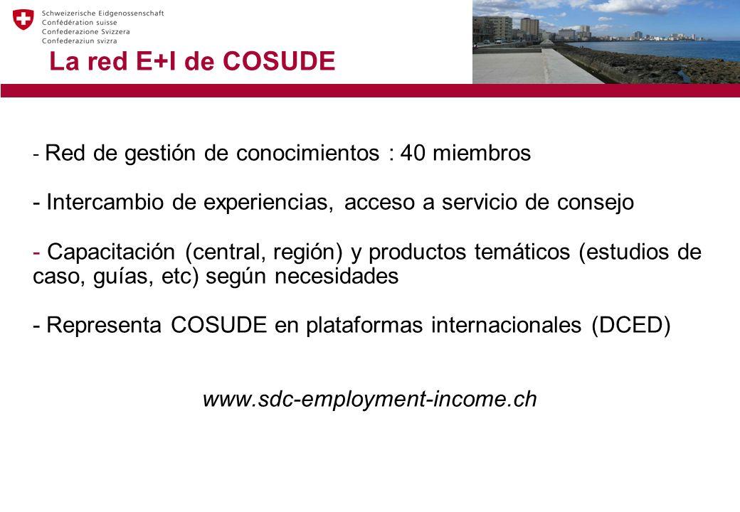 La red E+I de COSUDE - Red de gestión de conocimientos : 40 miembros - Intercambio de experiencias, acceso a servicio de consejo - Capacitación (central, región) y productos temáticos (estudios de caso, guías, etc) según necesidades - Representa COSUDE en plataformas internacionales (DCED) www.sdc-employment-income.ch
