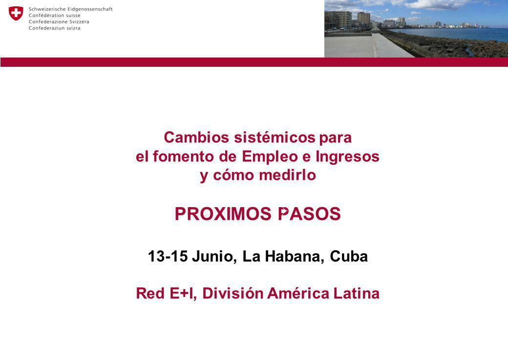 Cambios sistémicos para el fomento de Empleo e Ingresos y cómo medirlo PROXIMOS PASOS 13-15 Junio, La Habana, Cuba Red E+I, División América Latina