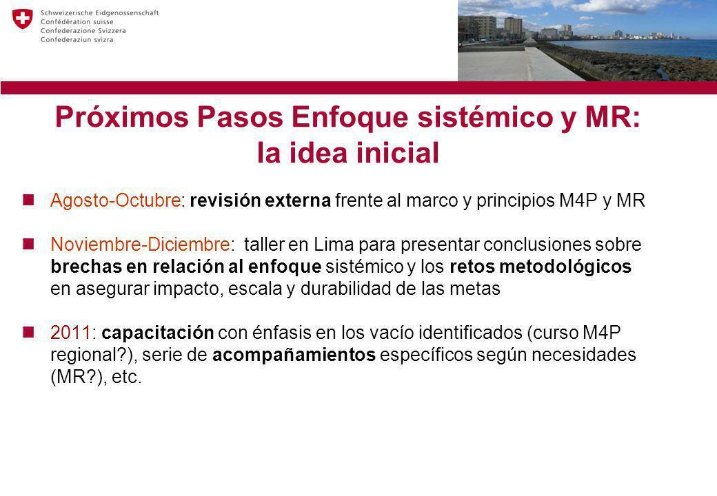 Próximos Pasos Enfoque sistémico y MR: la idea inicial Agosto-Octubre: revisión externa frente al marco y principios M4P y MR Noviembre-Diciembre: tal