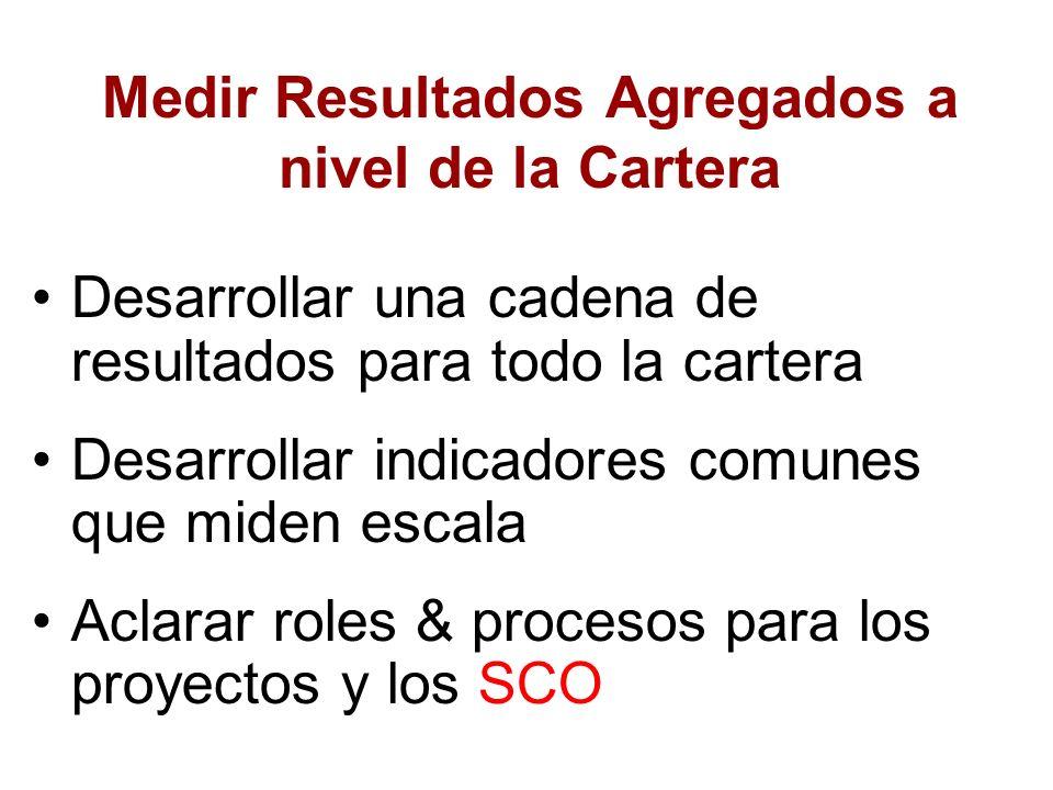 Medir Resultados Agregados a nivel de la Cartera Desarrollar una cadena de resultados para todo la cartera Desarrollar indicadores comunes que miden e