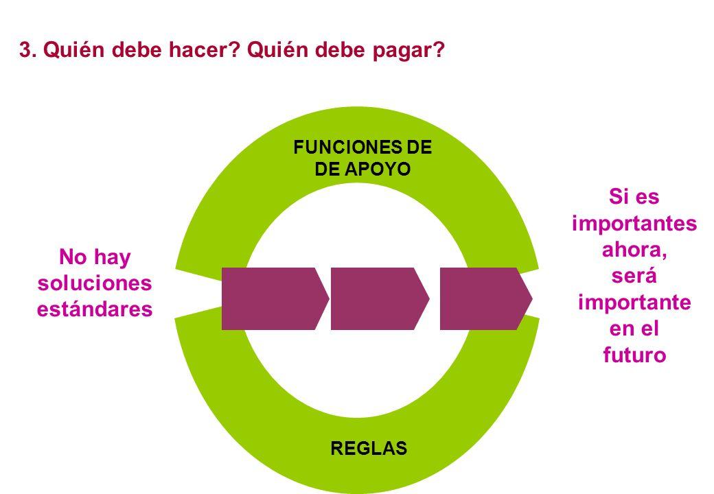 Associaciones Gobierno Sector privado ONGs Redes (informales) ACTORES No hay soluciones estándares FUNCIONES DE DE APOYO REGLAS 3. Quién debe hacer? Q