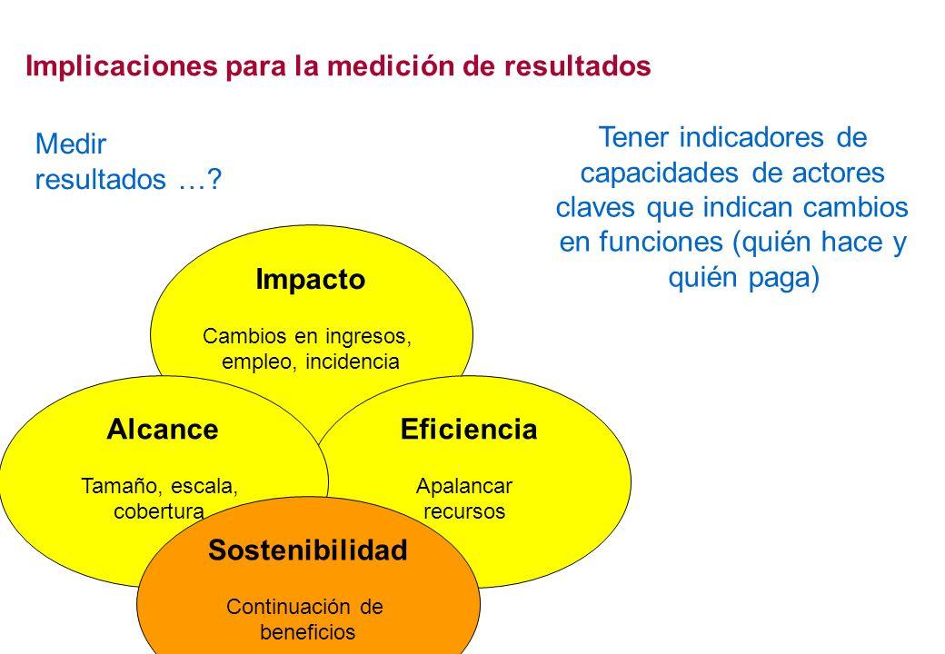 Impacto Cambios en ingresos, empleo, incidencia Eficiencia Apalancar recursos Implicaciones para la medición de resultados Alcance Tamaño, escala, cob