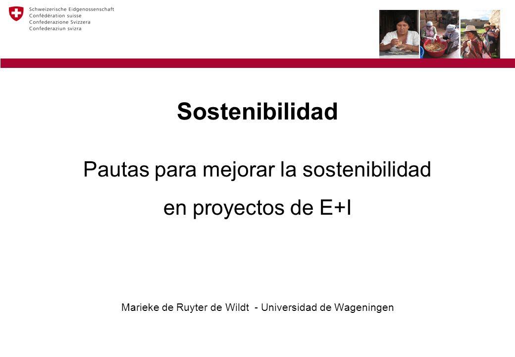 Sostenibilidad Pautas para mejorar la sostenibilidad en proyectos de E+I Marieke de Ruyter de Wildt - Universidad de Wageningen