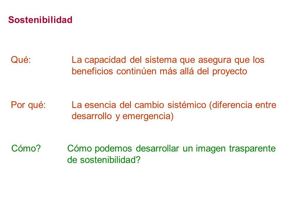 Sostenibilidad La capacidad del sistema que asegura que los beneficios continúen más allá del proyecto La esencia del cambio sistémico (diferencia entre desarrollo y emergencia) Qué: Por qué: Cómo Cómo podemos desarrollar un imagen trasparente de sostenibilidad