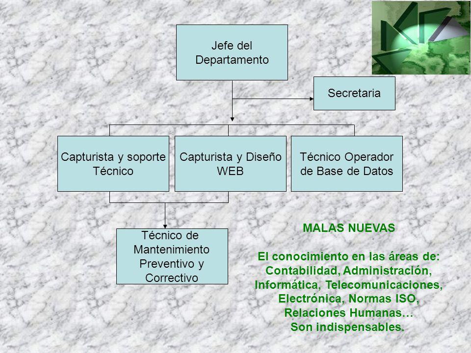 Jefe del Departamento Capturista y soporte Técnico Técnico Operador de Base de Datos Capturista y Diseño WEB Secretaria Técnico de Mantenimiento Preve