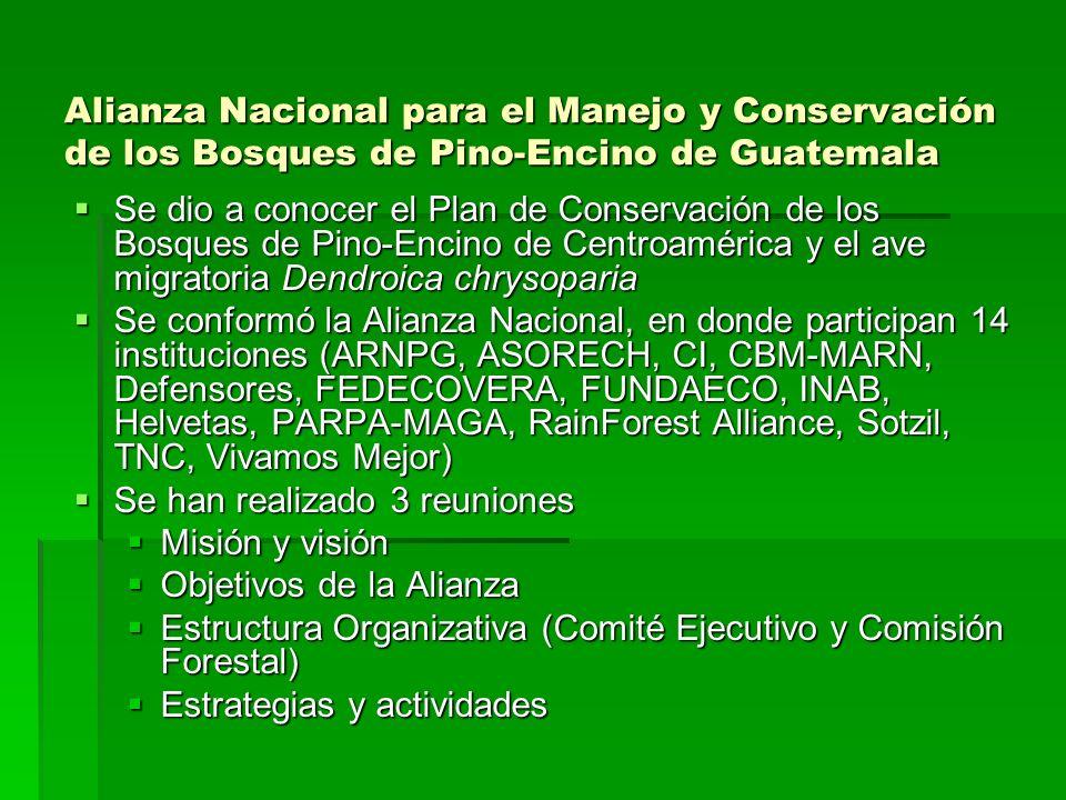 Alianza Nacional para el Manejo y Conservación de los Bosques de Pino-Encino de Guatemala Se dio a conocer el Plan de Conservación de los Bosques de P