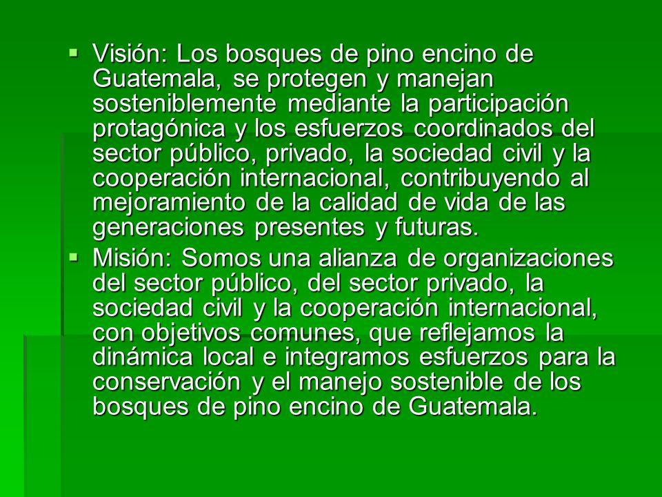 Objetivos de la Alianza: Promover la coordinación de acciones que favorezcan la conservación y el manejo sostenible de los bosques de pino- encino de Guatemala Promover la coordinación de acciones que favorezcan la conservación y el manejo sostenible de los bosques de pino- encino de Guatemala Incidir en las agendas nacionales de conservación, manejo y desarrollo para el mejoramiento y aplicación del marco legal en los bosques de pino-encino Incidir en las agendas nacionales de conservación, manejo y desarrollo para el mejoramiento y aplicación del marco legal en los bosques de pino-encino Fortalecer la conciencia pública para la valoración de los bienes y servicios que proporcionan los bosques de pino-encino de Guatemala Fortalecer la conciencia pública para la valoración de los bienes y servicios que proporcionan los bosques de pino-encino de Guatemala Propiciar la participación social para la protección y manejo de los bosques de pino-encino de Guatemala Propiciar la participación social para la protección y manejo de los bosques de pino-encino de Guatemala Fortalecer y gestionar la inversión pública y privada, tanto nacional como internacional, para fortalecer las acciones de conservación y manejo de los bosques de pino-encino.