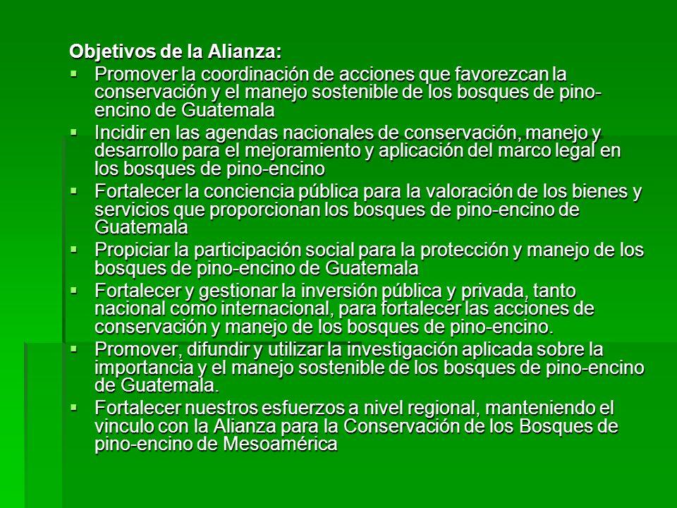 Objetivos de la Alianza: Promover la coordinación de acciones que favorezcan la conservación y el manejo sostenible de los bosques de pino- encino de