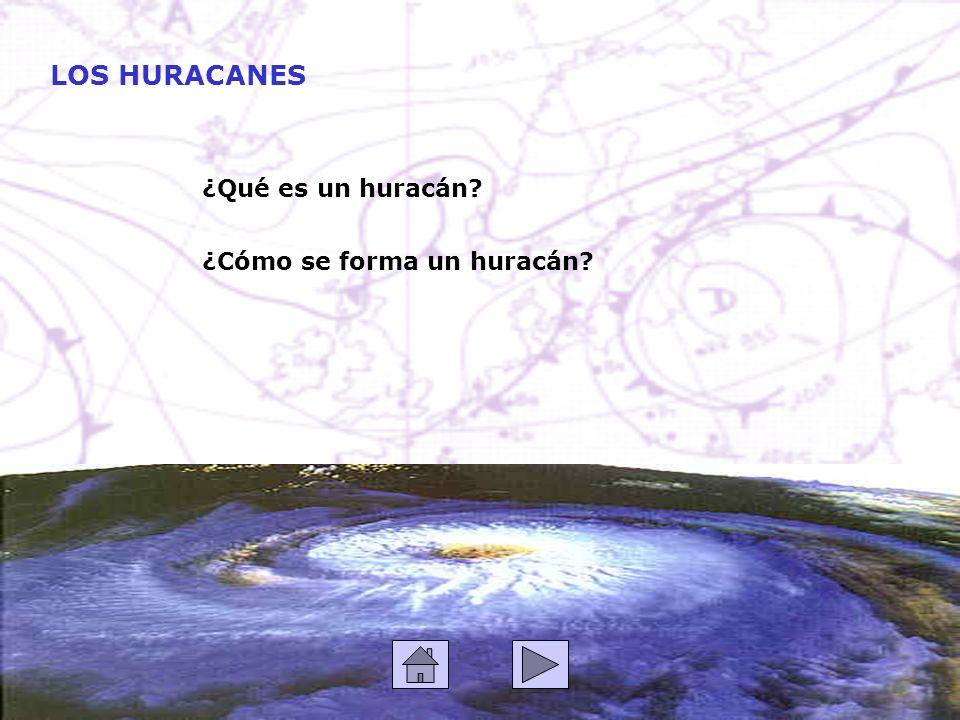 ¿Qué es un huracán? LOS HURACANES ¿Cómo se forma un huracán?