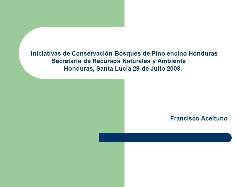 Iniciativas de Conservación Bosques de Pino encino Honduras Secretaria de Recursos Naturales y Ambiente Honduras, Santa Lucia 29 de Julio 2008.