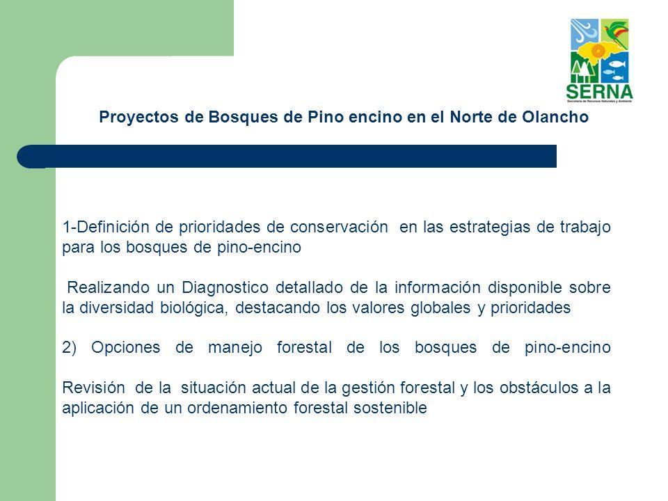 - La declaración de las áreas protegidas se realiza por medio de propuesta de la Secretaría de Estado en los Despachos de Recursos Naturales y Ambiente.