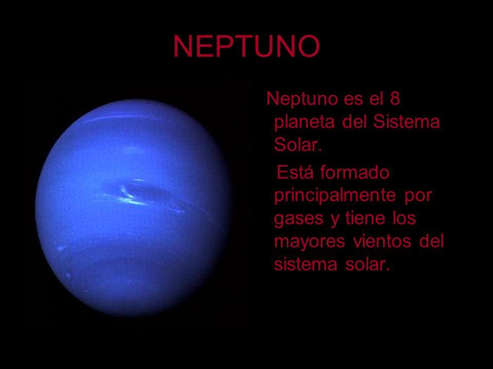 NEPTUNO Neptuno es el 8 planeta del Sistema Solar. Está formado principalmente por gases y tiene los mayores vientos del sistema solar.