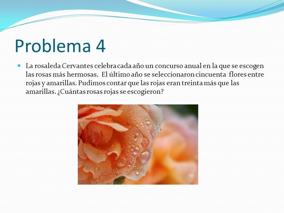 Problema 4 La rosaleda Cervantes celebra cada año un concurso anual en la que se escogen las rosas más hermosas. El último año se seleccionaron cincue