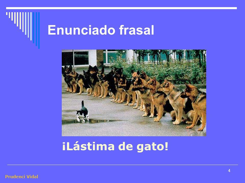 Prudenci Vidal 4 Enunciado frasal ¡Lástima de gato!