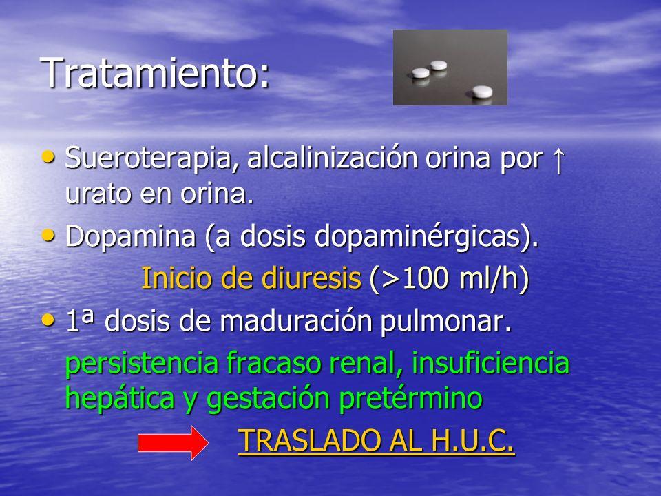 Tratamiento: Sueroterapia, alcalinización orina por urato en orina.