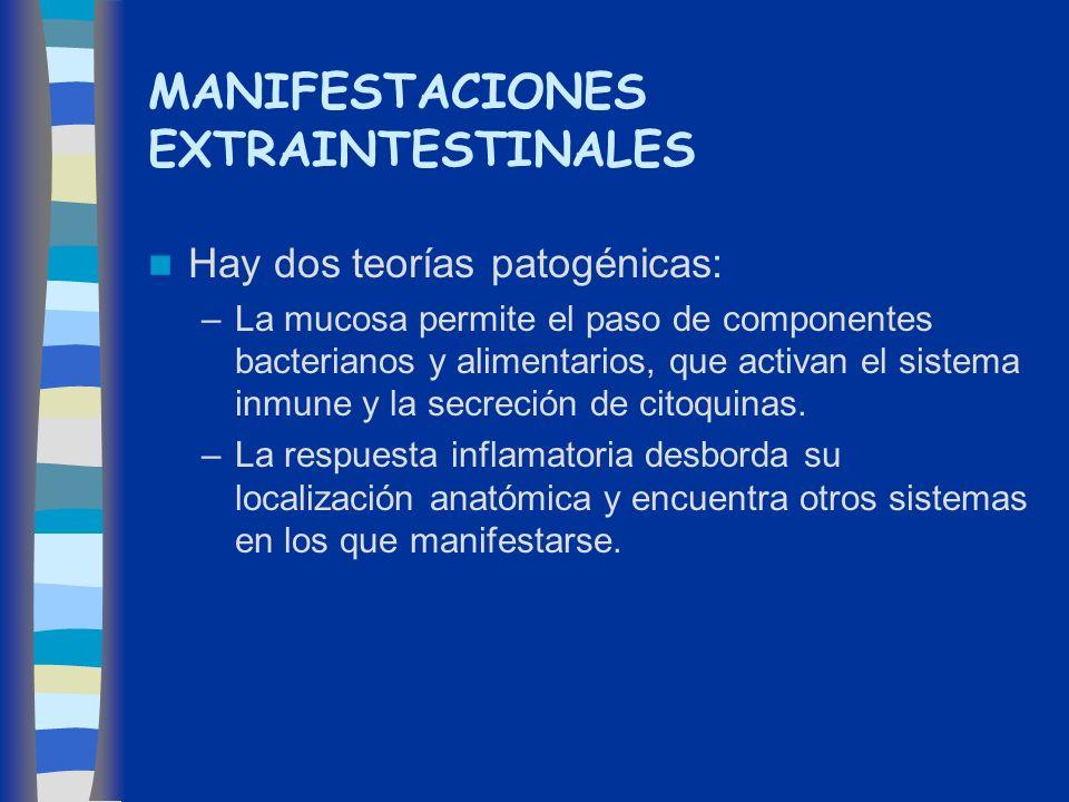 MANIFESTACIONES EXTRAINTESTINALES Hay dos teorías patogénicas: –La mucosa permite el paso de componentes bacterianos y alimentarios, que activan el si