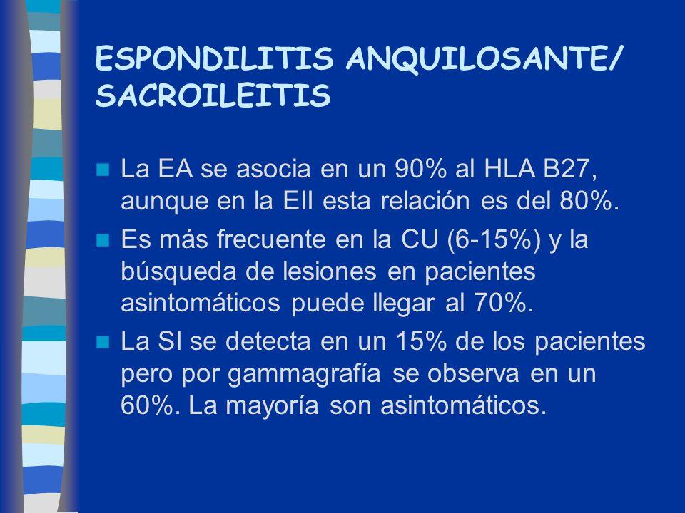 ESPONDILITIS ANQUILOSANTE/ SACROILEITIS La EA se asocia en un 90% al HLA B27, aunque en la EII esta relación es del 80%. Es más frecuente en la CU (6-