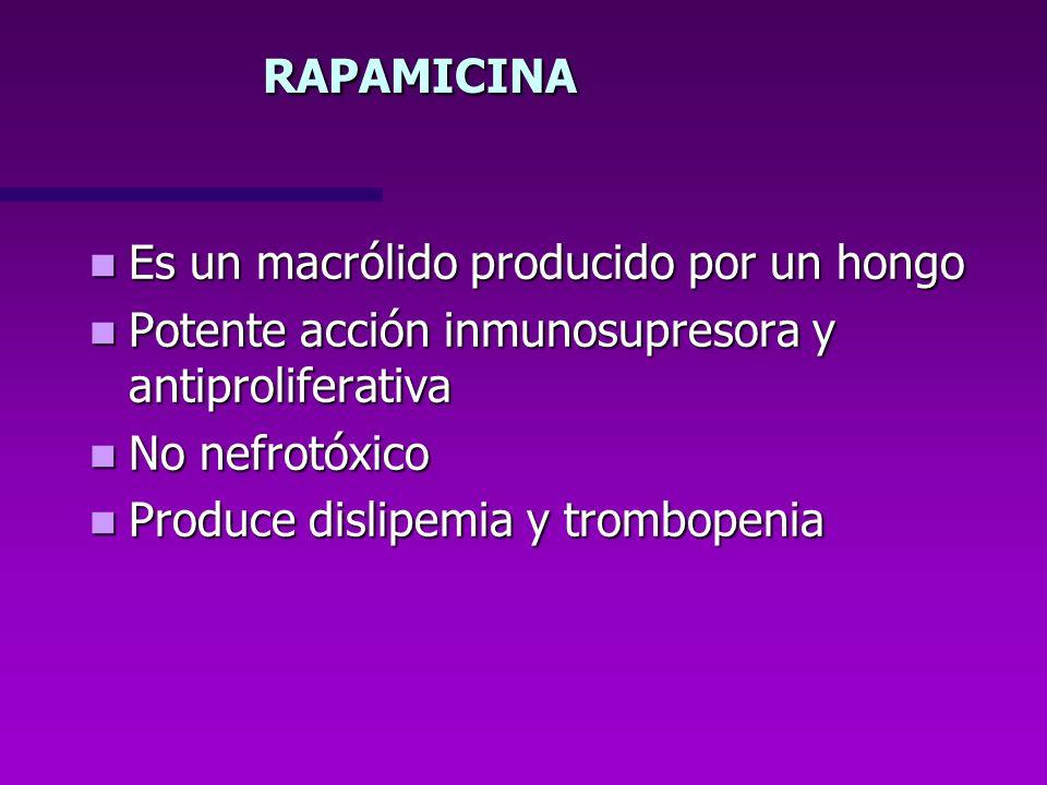 RAPAMICINA Es un macrólido producido por un hongo Es un macrólido producido por un hongo Potente acción inmunosupresora y antiproliferativa Potente ac