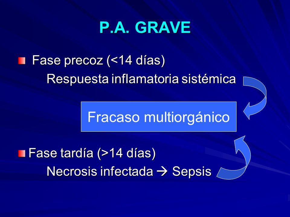 P.A. GRAVE Fase precoz (<14 días) Fase precoz (<14 días) Respuesta inflamatoria sistémica Fase tardía (>14 días) Necrosis infectada Sepsis Fracaso mul