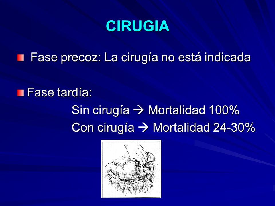 CIRUGIA Fase precoz: La cirugía no está indicada Fase precoz: La cirugía no está indicada Fase tardía: Sin cirugía Mortalidad 100% Con cirugía Mortali