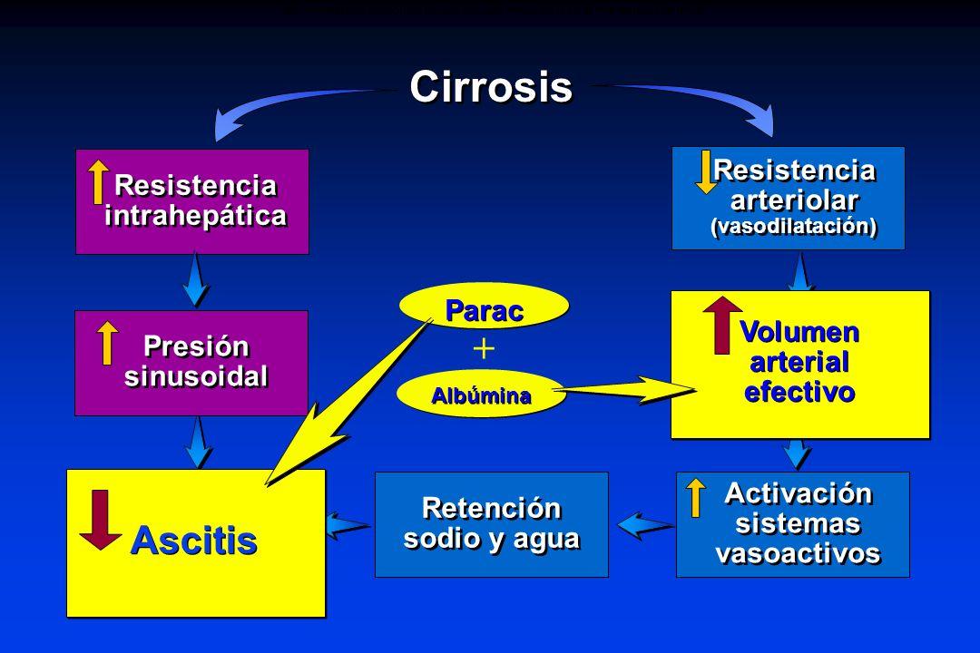 Ascites Albúmina Activación sistemas vasoactivos Effective arterial blood volume Cirrosis Resistencia intrahepática Resistencia arteriolar (vasodilata