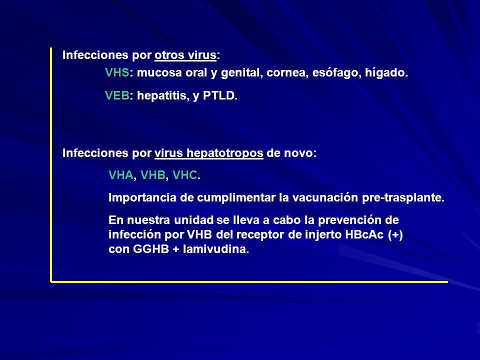 Infecciones por otros virus: VHS: mucosa oral y genital, cornea, esófago, hígado. VEB: hepatitis, y PTLD. Infecciones por virus hepatotropos de novo: